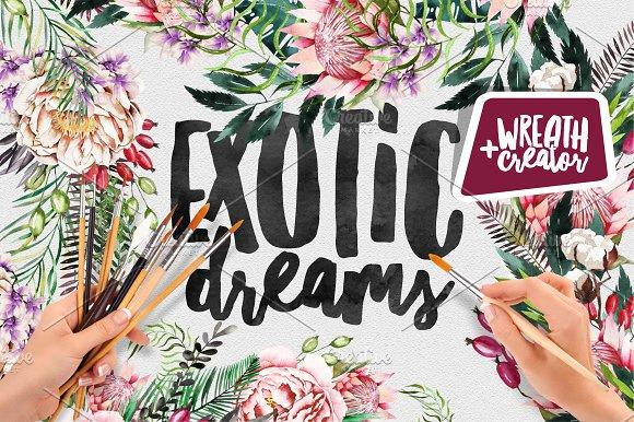 Exotic Dreams | Wreath Creator - Illustrations