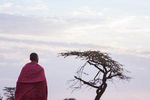 Maasai walking in sunset