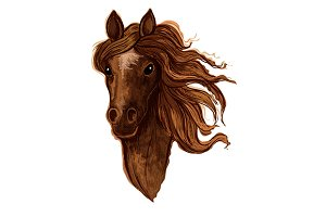 Sketch of brown arabian mare horse