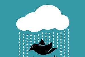 Birds in the sky when it rains.
