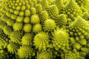 Romanesco broccoli vegetable texture