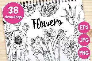 Big set flowers