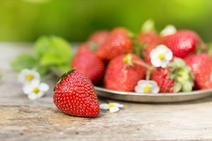 Fresh ripe sweet strawberries crop in garden