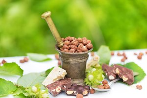 Lot of different chocolate, many variations hazelnuts ingredients in nature