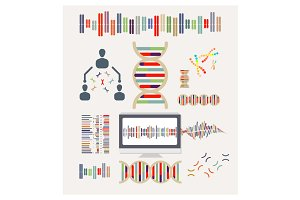 DNA and Chromosomes Vector Icons