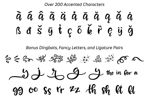 Zooky Squash A Hand Lettering Font Script Fonts Creative Market