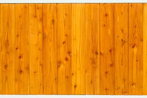 Wood pine plank white texture