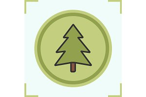 Fir tree icon. Vector