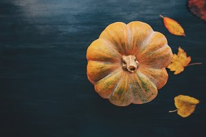 Pumpkin with fall yellow leaves