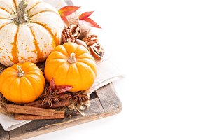 Variety of decorative pumpkins on white background