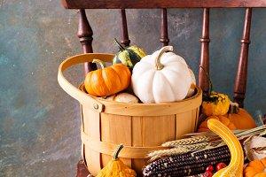 Fall seasonal still life with pumpkins