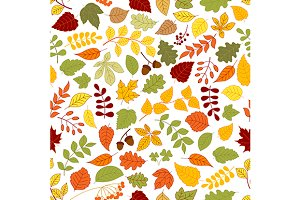 Autumn fallen leaves pattern