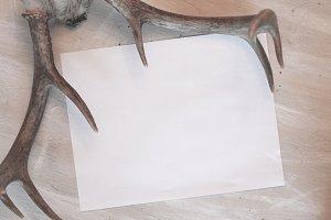 Deer Antler Mockup