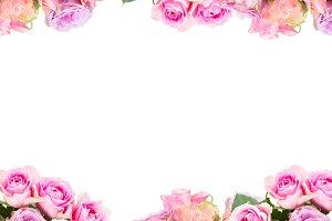 borders of fresh roses