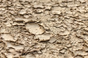 Dry ground background