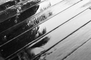 Wet wood floors