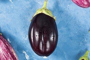 Eggplants on blue background. Vertical