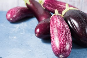 Eggplants on blue background. Copy space