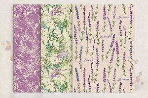 Set of seamless lavender patterns