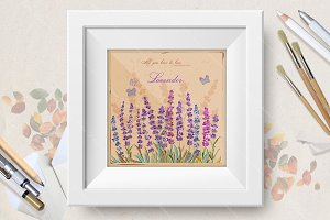 Provence. Lavender. Vintage style