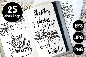 Vector sketches of flowers in pots