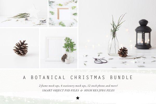 The Botanical Christmas BUNDLE