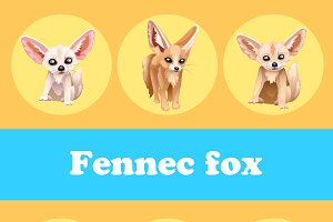 Fennec fox on a yellow background