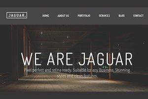 Jaguar I Multiple Demos I 50% off