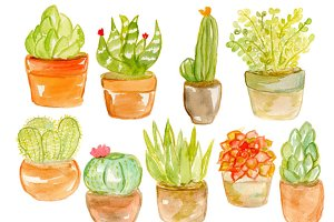 Watercolor Potted Succulents