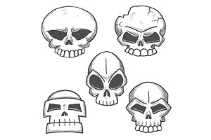 Sketched skulls with eerie cranium