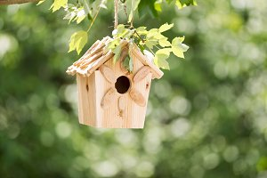 New Birdhouse ready to rent