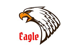 Eagle or hawk head mascot
