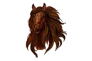 Brown chestnut horse