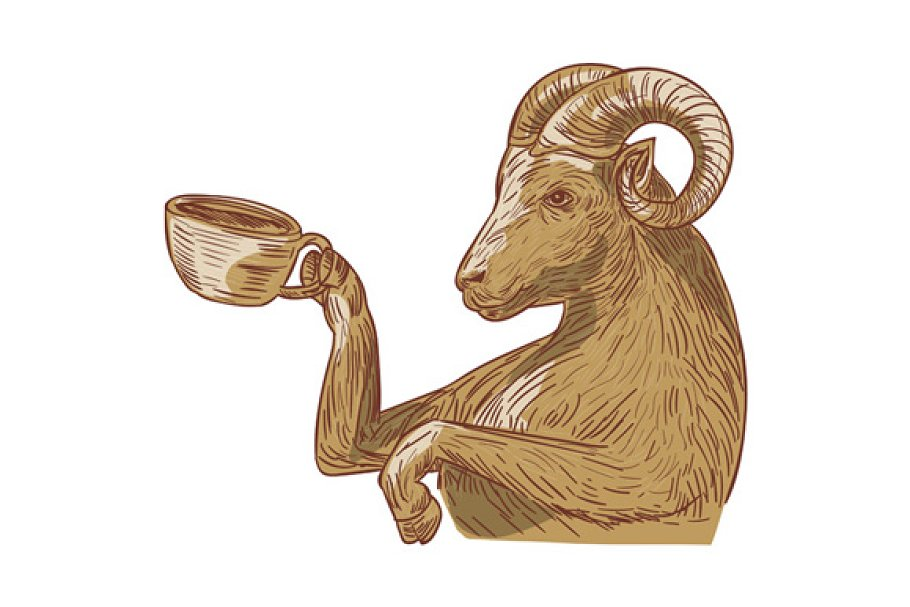 Ram Goat Drinking Coffee Drawing