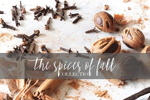 [22] FALL SPICES PHOTO BUNDLE