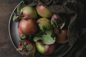 Harvest of wild apples