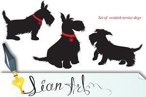 Set of of scottish terrier dogs