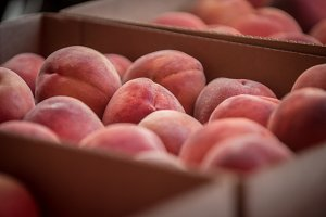 Peaches Macro