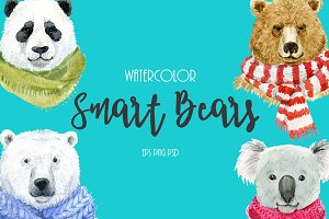 Smart Bears