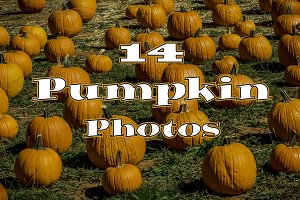 14 Pumpkin Photo Collection