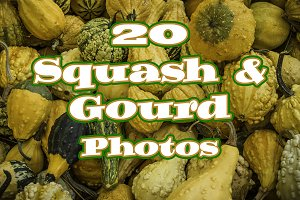 20 Squash & Gourd Photo Collection