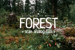 10 x Forest Film Photo Pack
