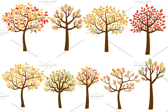 Fall trees clip art, Autumn trees ~ Illustrations on Creative Market