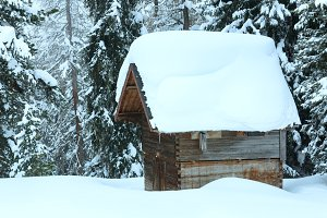 wood shed in winter forest