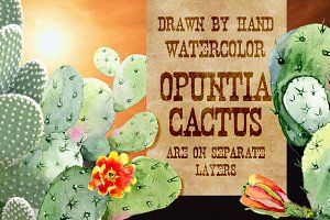 Layered watercolor Cactus set