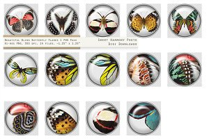 Butterfly Paperweight Button 1 White