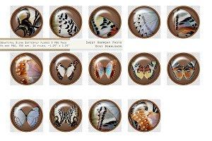 Butterfly Paperweight Button 3 Tan