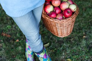 Woman carrying basket full of apple