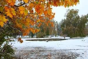 Park and first snow