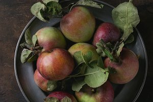 Wild apples with leaves